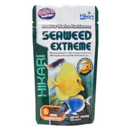 Hikari Hikari Marine Seaweed Ex Small Pellet 100 Gram Voeding
