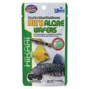 Hikari Hikari Mini Algae wafers 22 gram