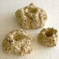 Rifkeramiek Aflegsteen - 5 cm - voor het stekken van koralen per stuk