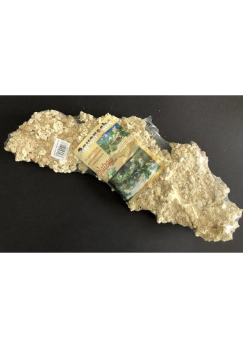 Aquaroche Plateau L 50 cm