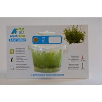 LEPTODICTYUM RIPARUM (STRINGY MOS) EASY GROW NR 13