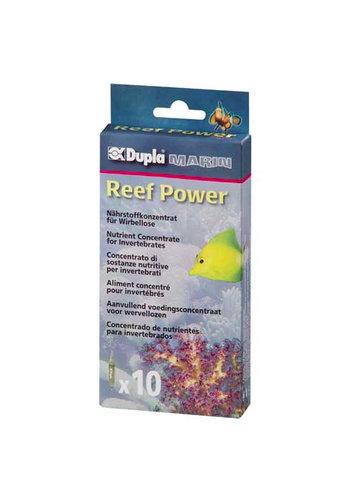 Dupla Reef power 20 stuks