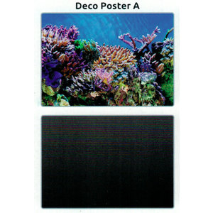SuperFish SuperFish Deco poster A3 100x49 cm