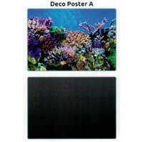 SuperFish Deco poster A2 60X49 CM