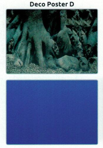 SuperFish Deco poster D4 120X49 CM