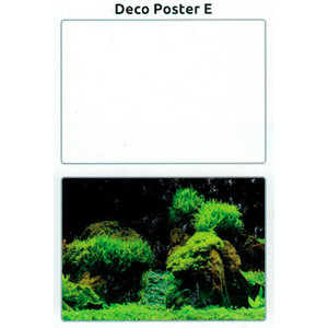SuperFish SuperFish Deco poster E5 120X61 CM