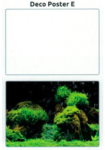 SuperFish Deco poster E5 120X61 CM
