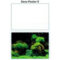 SuperFish Deco poster E6 150X61 CM