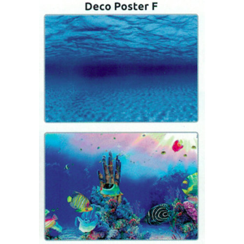 SuperFish SuperFish Deco poster F1 60x30 cm