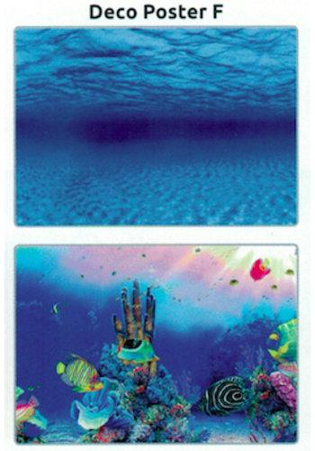 SuperFish Deco poster F2 60X49 CM