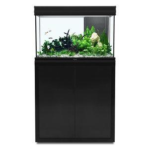 aquatlantis aquatlantis fusion 80 aquarium zwart set met LED