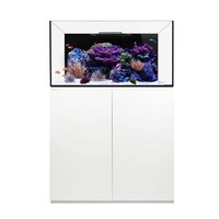 thumb-Waterbox platinum Reef 100.3 Wit-1
