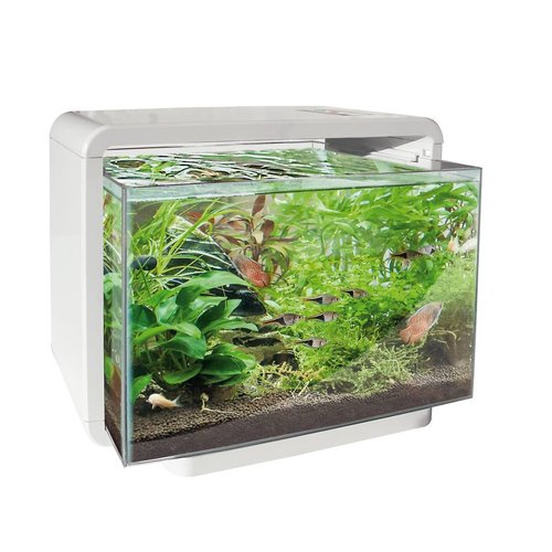 SuperFish SuperFish Home 25 wit