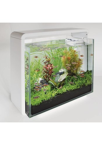 SuperFish home 40 wit
