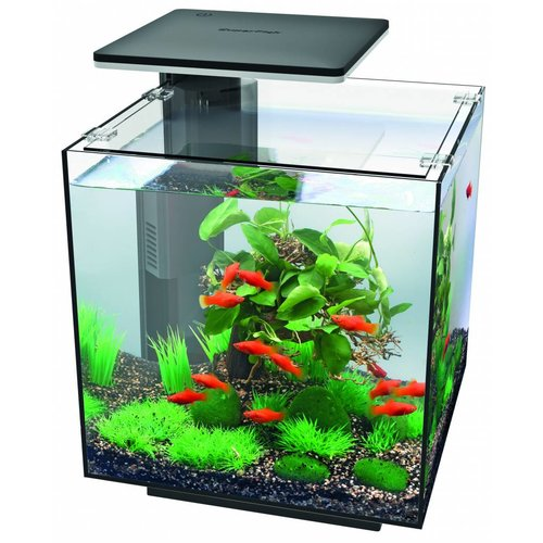 SuperFish SUPERFISH QUBIQ 30 LED ZWART