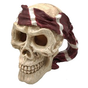 SuperFish SuperFish Skull red pirate