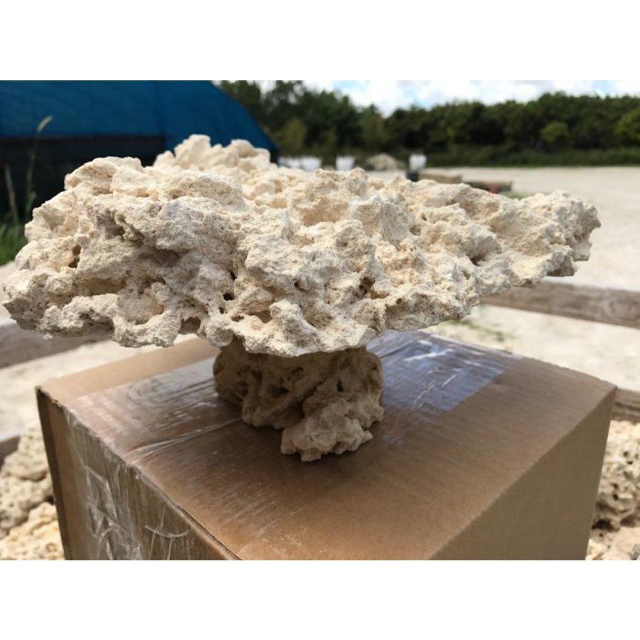 Marcorocks pedestal rock (natural top)-1