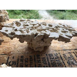 Marcorocks Marcorocks pedestal rock ( flat top)