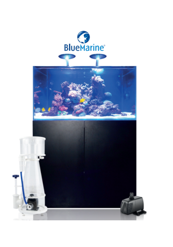 Blue Marine Reef 350