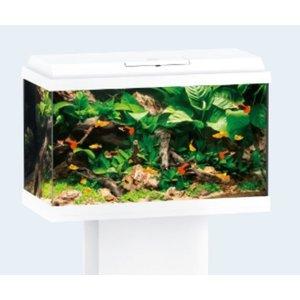 Juwel Juwel Aquarium Primo 70 Wit