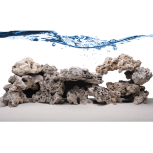 Fiji Skeleton Fiji Skeleton Rock Stukken (dood) levend steen 10kg