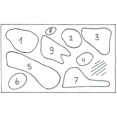 AQUARIUMPLANTEN PAKKET 2    40-55  CM