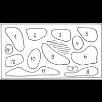 AQUARIUMPLANTEN PAKKET 4    70-90 CM