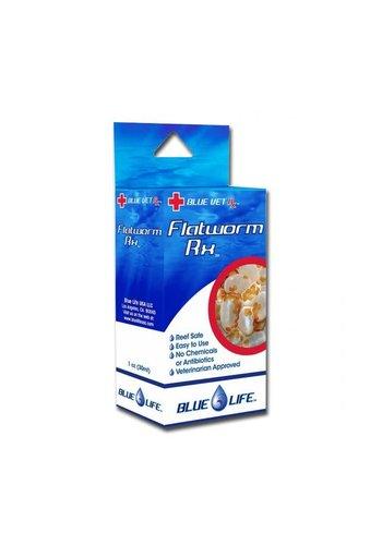 Blue Life Flat worm RX