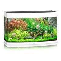 thumb-Juwel Vision 260 Aquarium-1