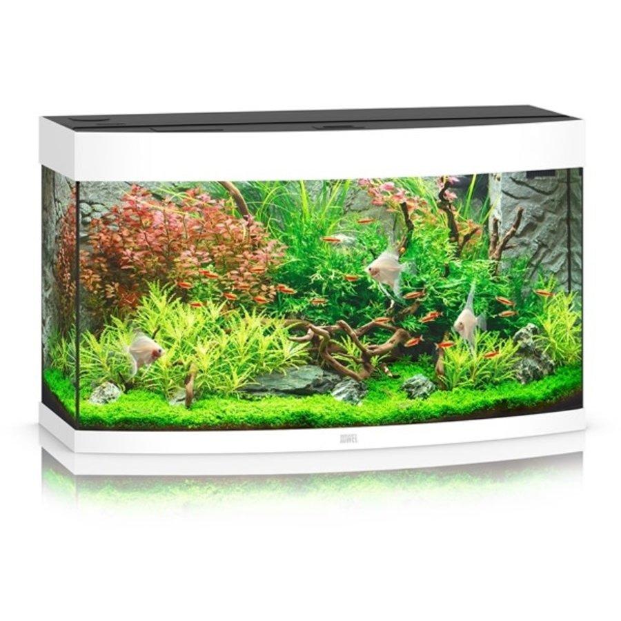 Juwel Vision 260 Aquarium-1