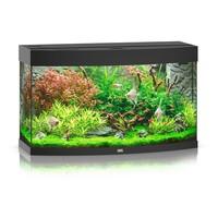 thumb-Juwel Vision 260 Aquarium-2