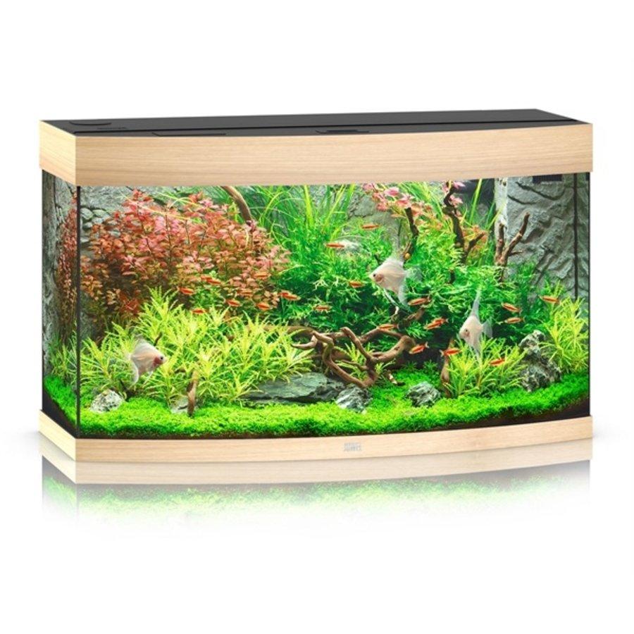 Juwel Vision 260 Aquarium-6