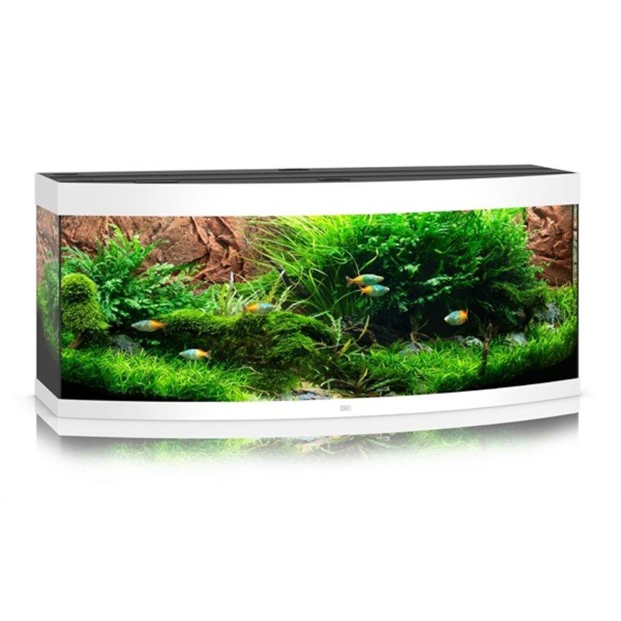 Juwel Vision 450 Aquarium-7
