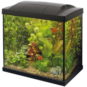 SuperFish SuperFish Start 30 Tropical Kit zwart