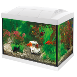 SuperFish SuperFish Start 20 Goldfish kit wit