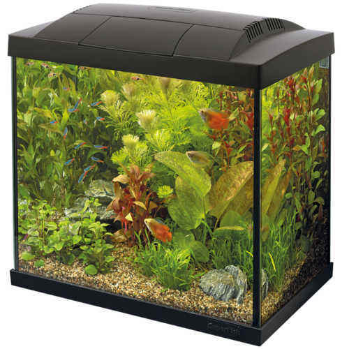 SuperFish SuperFish Start 50 tropical kit zwart