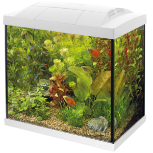 SuperFish SuperFish Start 50 Tropical Kit wit
