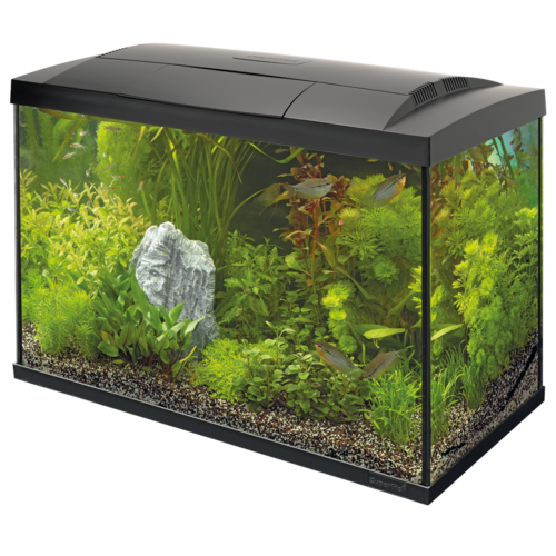 SuperFish SuperFish Start 70 Tropical Kit Zwart