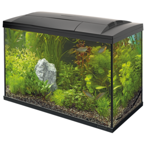 SuperFish SuperFish Start 100 tropical kit zwart