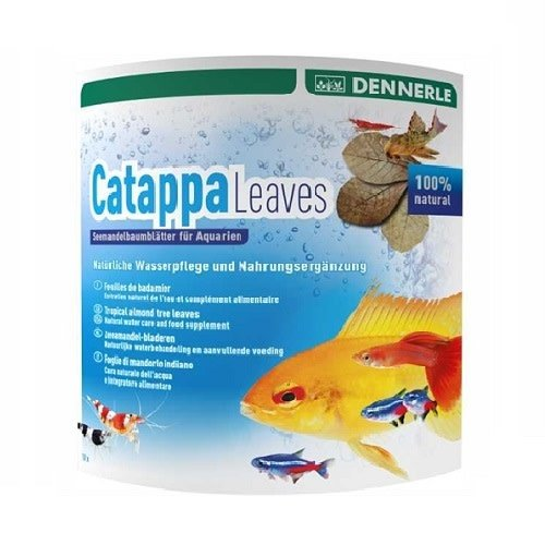Dennerle Dennerle Catappa Leaves 10 st - Voor 800 L