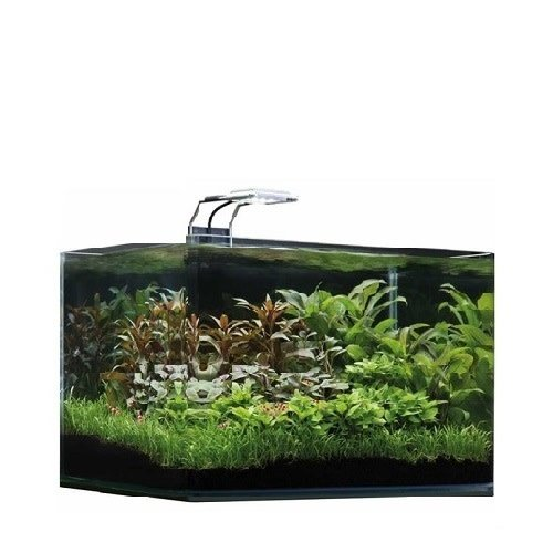 Dennerle Dennerle Nano Scapers Tank basic 35 L - LED 5.0