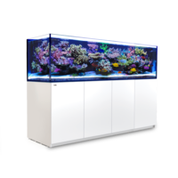 Red Sea Reefer 3XL 900 Reef System - Wit