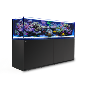 RedSea Red Sea Reefer 3XL 900 Reef System - Zwart