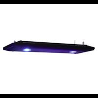 Kessil LED AP700