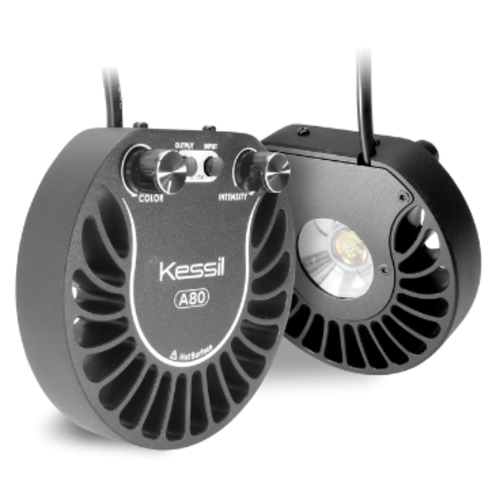 Kessil Kessil LED A80 Tuna Blue
