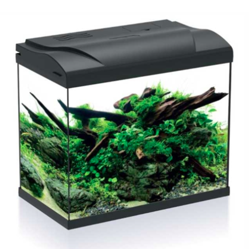 HS Aqua HS Aqua Aquarium Platy 30 led zwart 39x22x36 cm