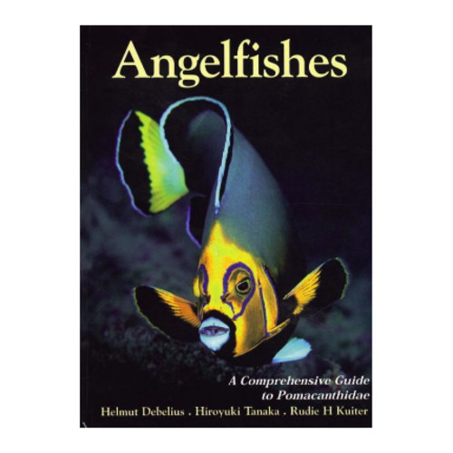 Two Little Fishies Angelfishes guide