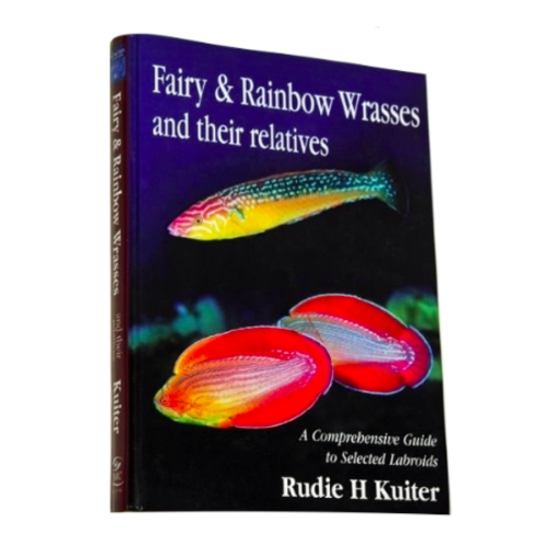 DJM Fairy and Rainbow Wrasses guide
