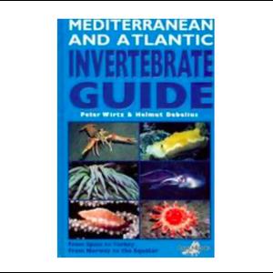 DJM Mediterranean + Atlantic invertebrate guide