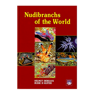 DJM Nudibranchs of the world